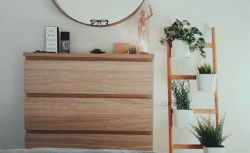 6 planten voor in je slaapkamer
